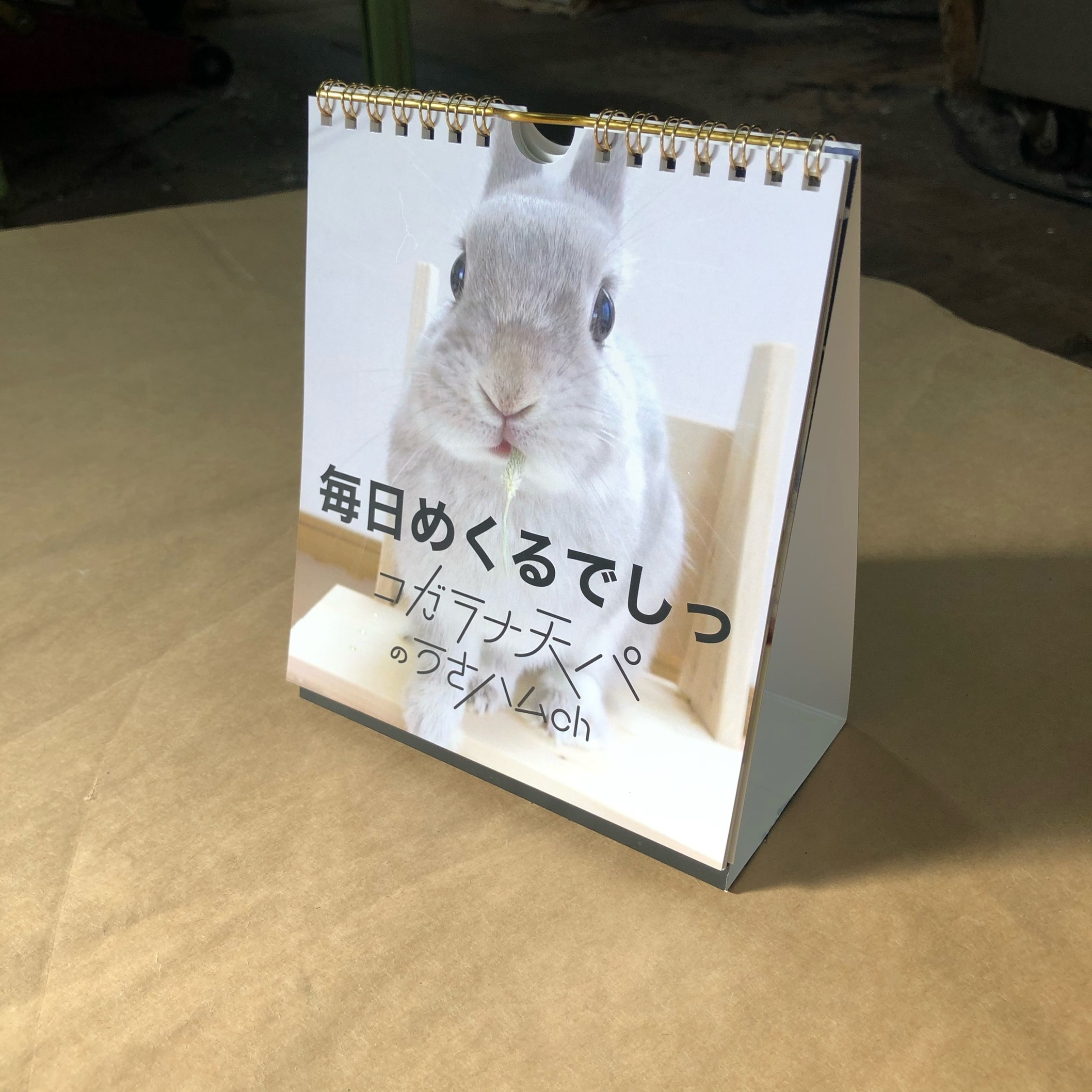 コガラナ天パのうさハムch ぽぽちゃん日めくりカレンダー